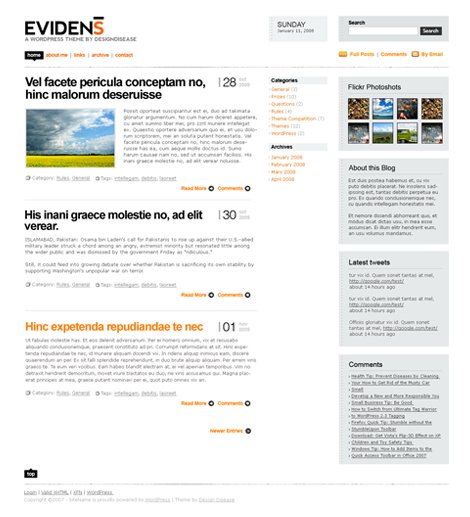 Evidens WordPress Theme